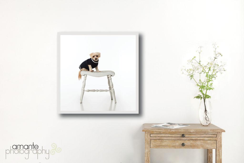 contemporary framed metal print