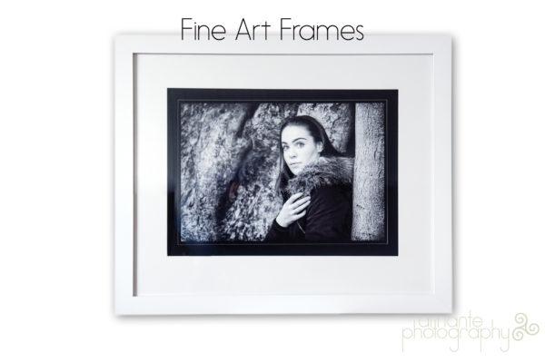 Waratah Classic Frame A2